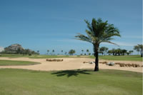 Sea Pine Golf Course